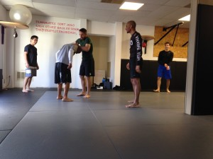 Coach Steve Haigh, MMA Instruction